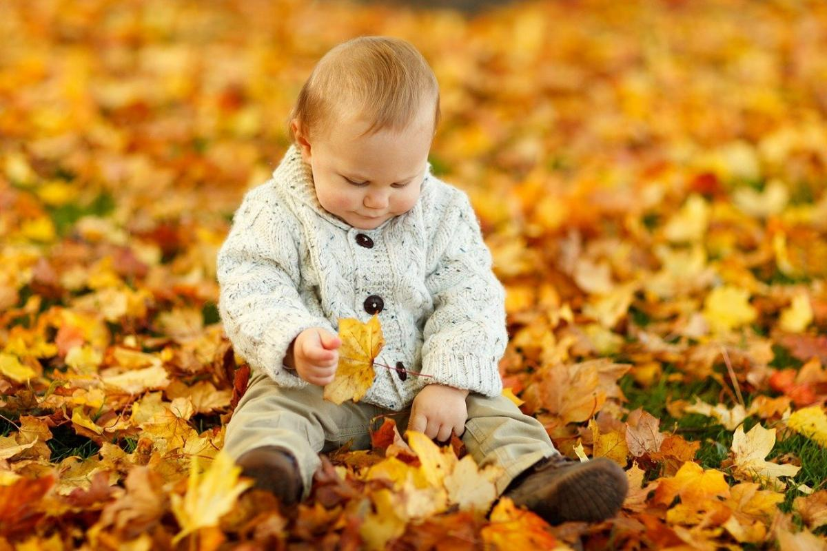 День сыновей - лучшие поздравления / фото pixabay.com