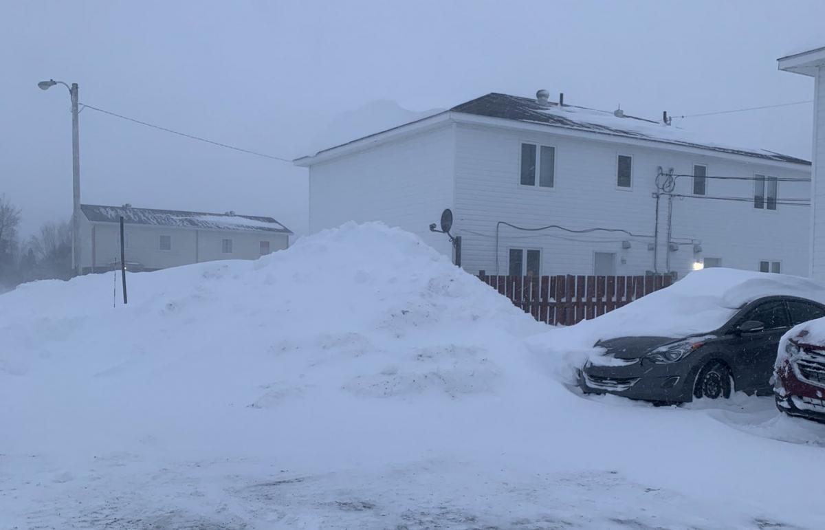 В Канаде выпало рекордное количество снега / Фото Twitter @chelseaabarrett