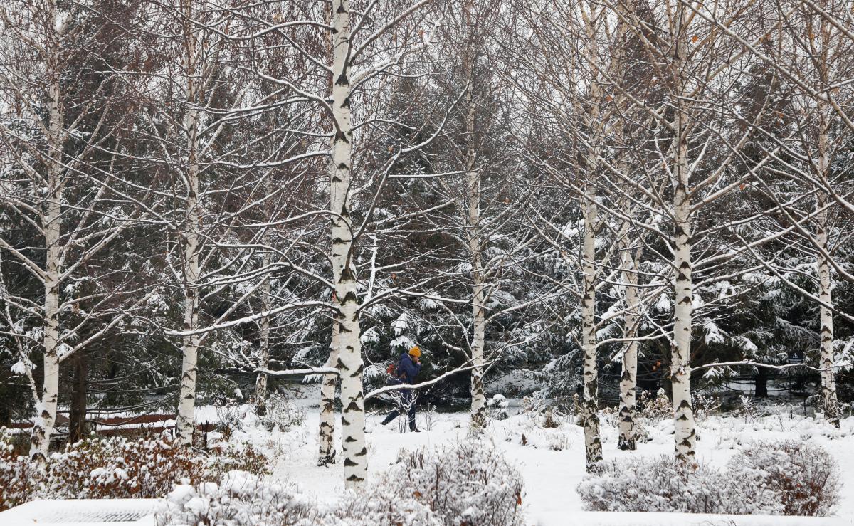 Зима в Украине начнется с мокрого снега / Фото REUTERS