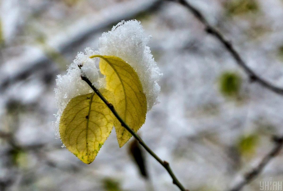 Початок зими порадує українців снігом / фото УНІАН