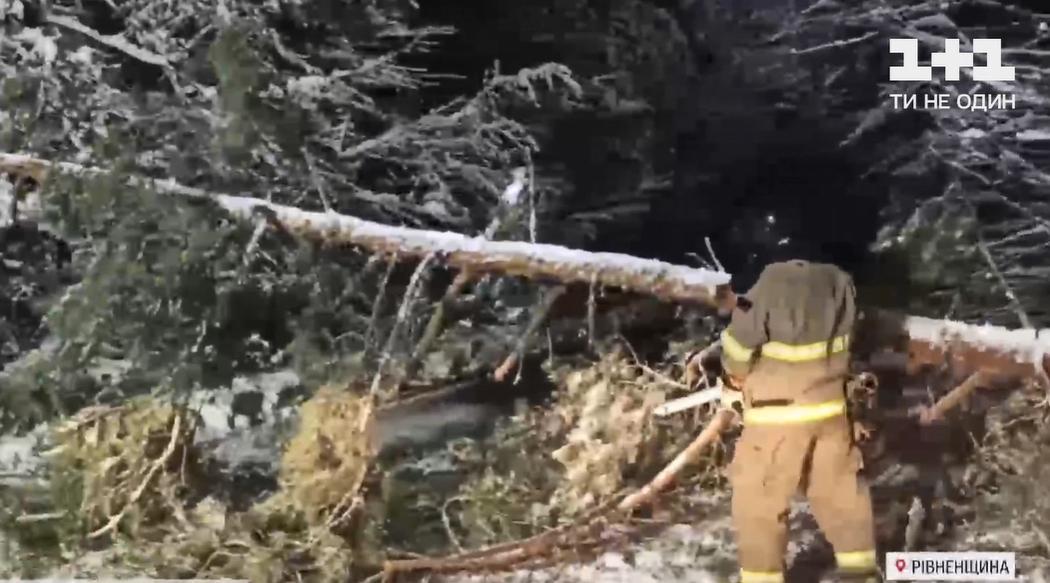 Спасатели сопровождали скоруювплоть до больницы / Скриншот