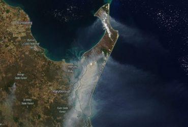 Половина острова в Австралії згоріла через сильні лісові пожежі (відео)