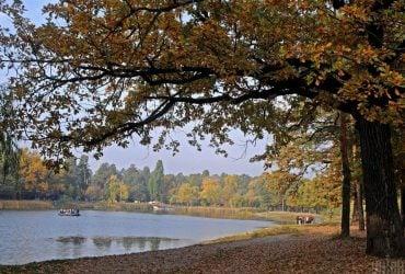Сьогодні на киян чекає похмурий і прохолодний день: прогноз погоди на 18 жовтня
