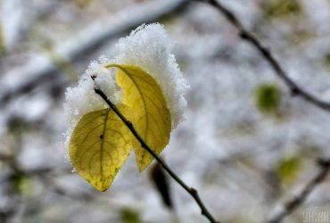 Декабрь принесет мокрый снег в две области: прогноз погоды в Украине на сегодня (карта, видео)