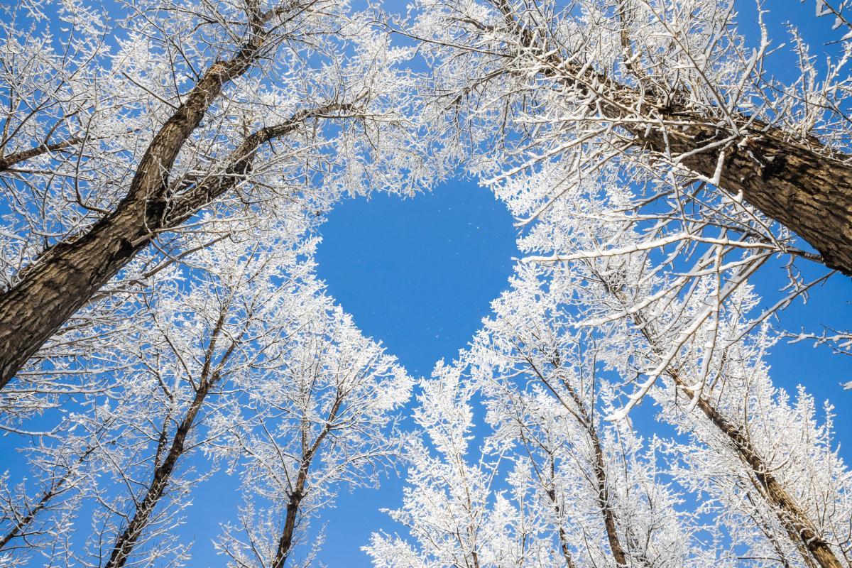 Ппрогноз погодина січень / фото ua.depositphotos.com