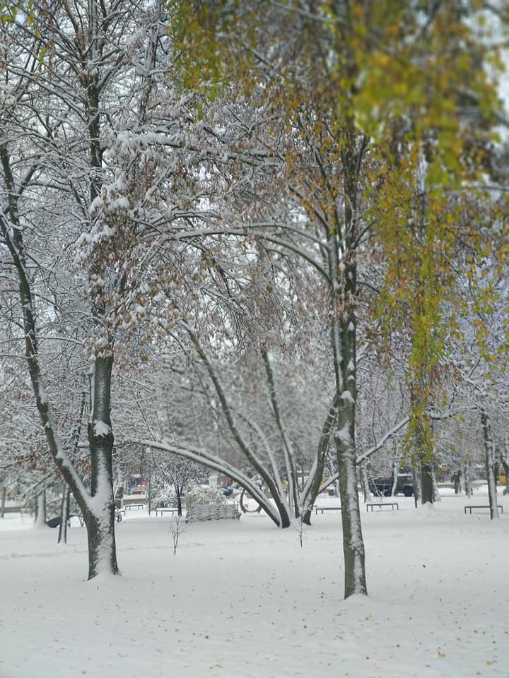 Снег в Конотопе / фото Yuliya Lykianova, Facebook