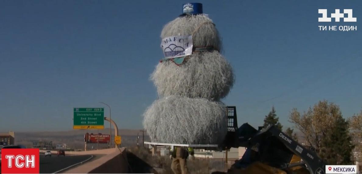 Ставлять таких сніговиків недалеко від автостради / скріншот