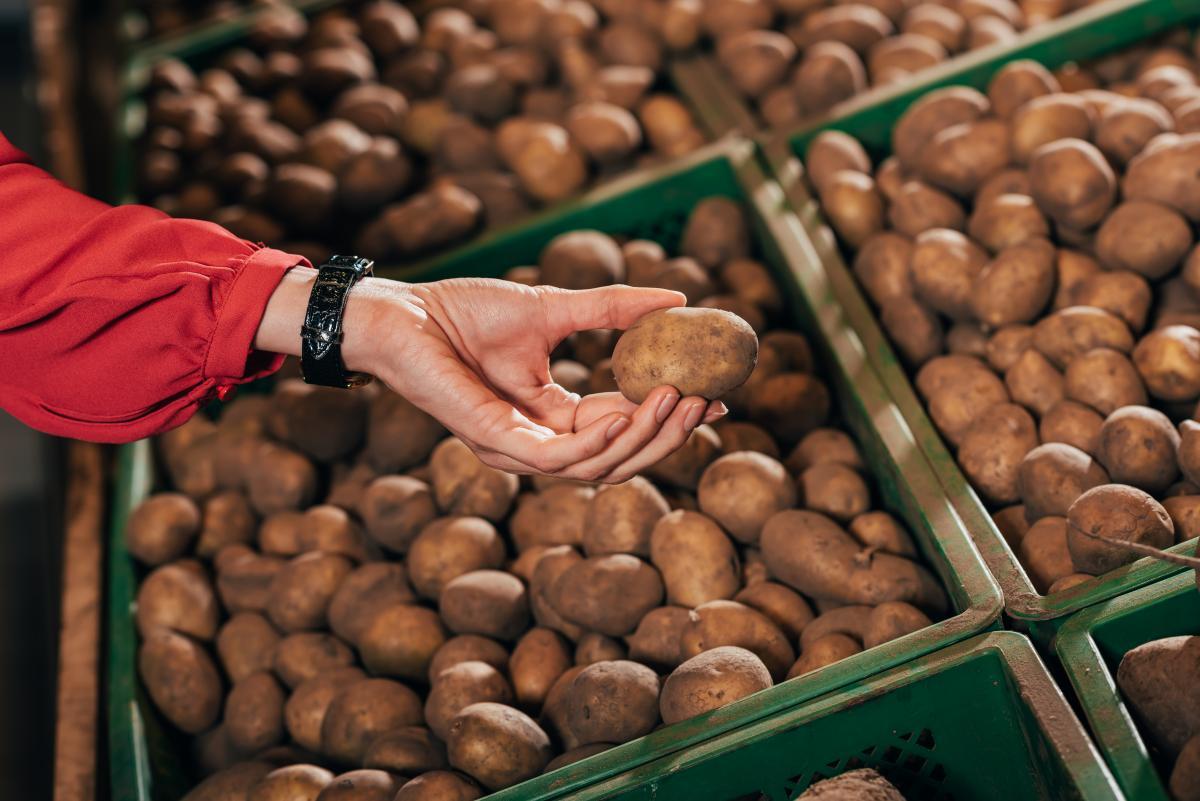 Производители картофеля вынуждены чуть ли не каждый день пересматривать цены на свою продукцию/ фото ua.depositphotos.com