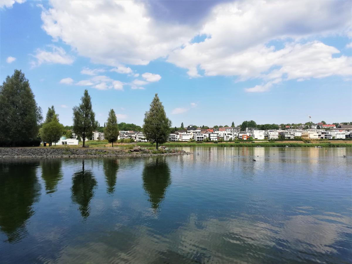 Озеро Фенікс в Дортмунді / фото Марина Григоренко