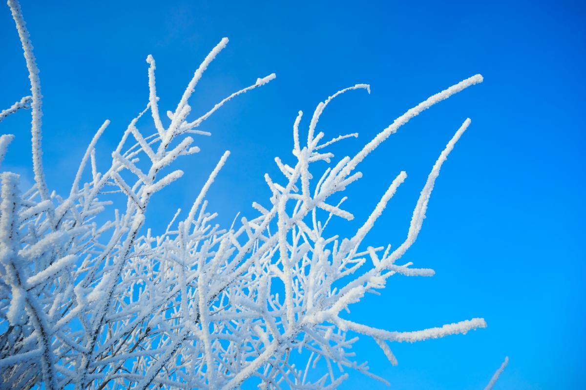 Через несколько дней в Украине должно потеплеть / фото ua.depositphotos.com