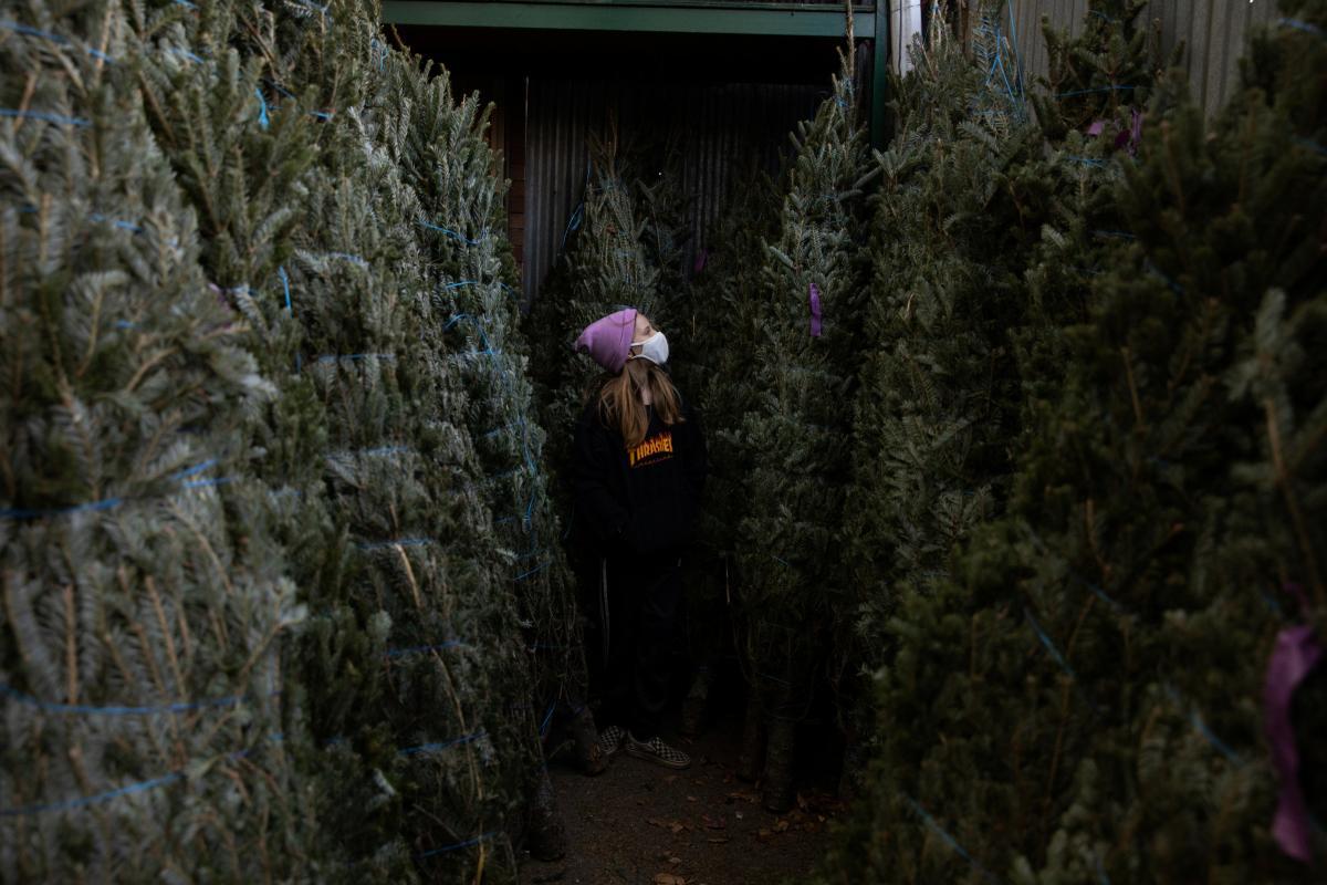 Когда спад пандемии в Украине - врач дал прогноз на 9-10 декабря / REUTERS
