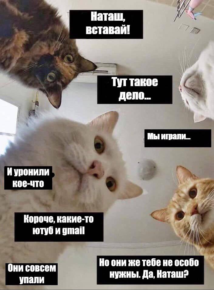 Фото из соцсетей