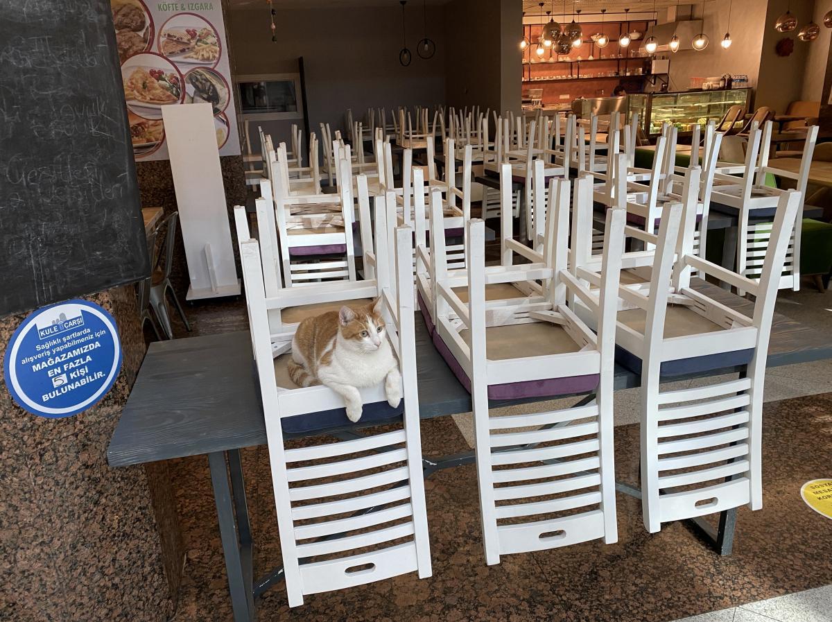 Из-за карантина кафе и рестораны в Стамбуле работают иначе / фото REUTERS