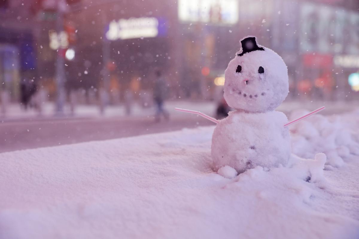 25 января - День счастливых снеговиков / фото REUTERS