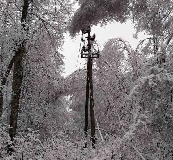 В пострадавших от непогоды населенных пунктах сломано порядка50 электроопор / фото Черниговоблэнерго