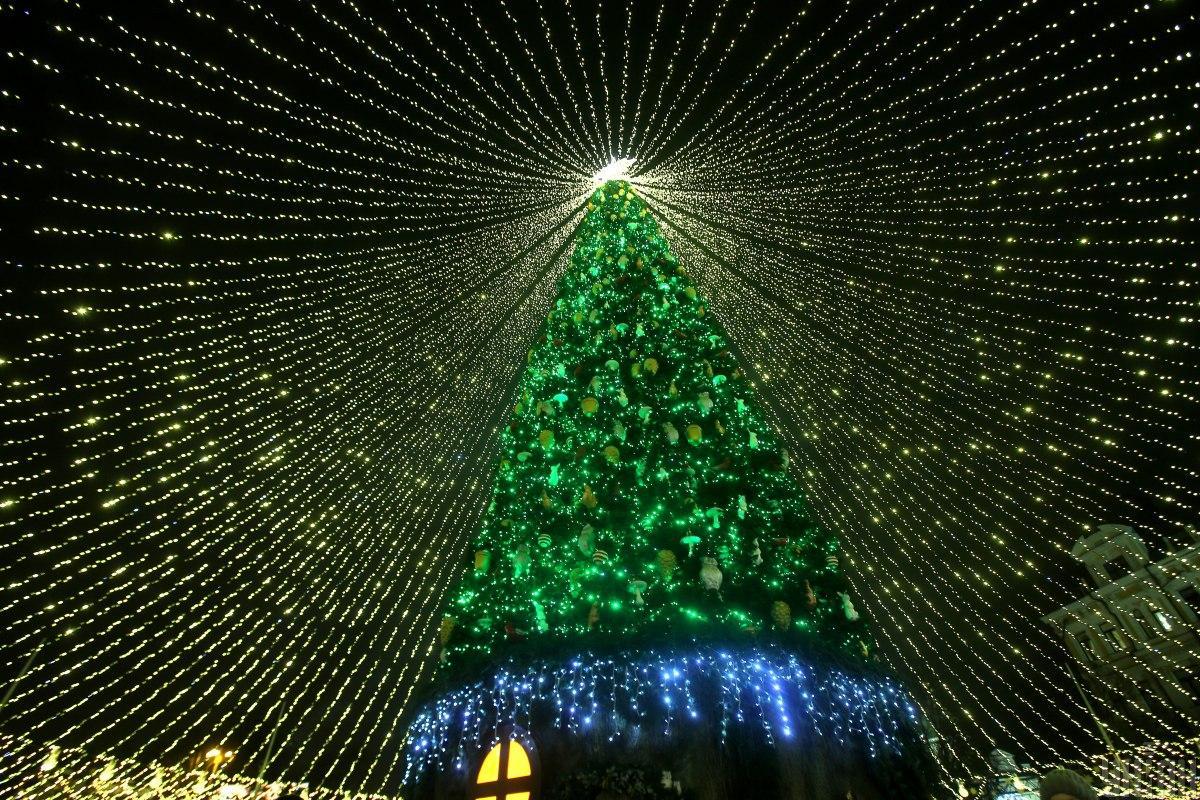По традиции мэр зажег огни елки / фото УНИАН