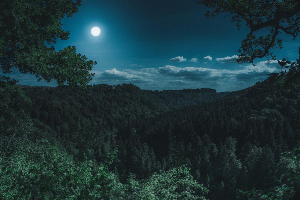 Лунный календарь снов с 11 по 20 августа / pixabay.com
