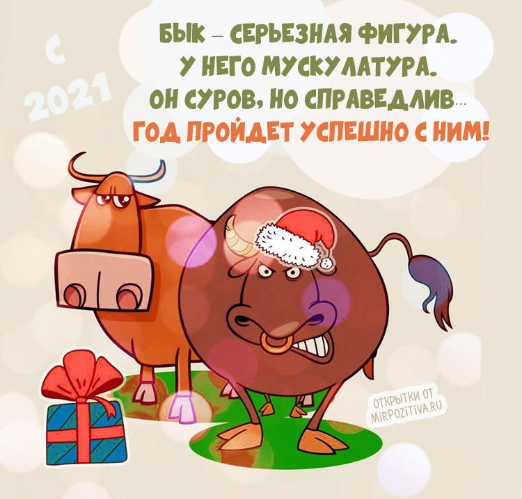 С новым годом быка 2021 / фото mirpozitiva.ru