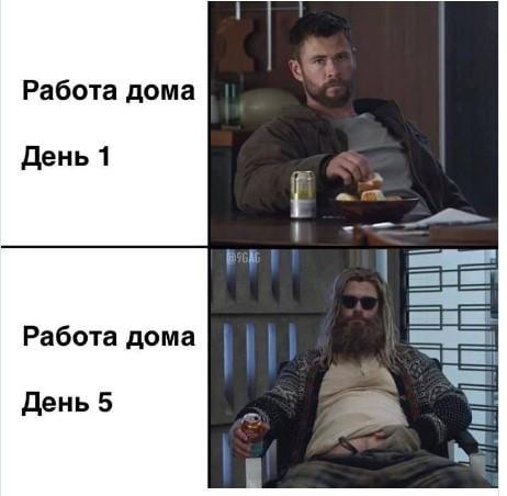 Мем про удаленку / фото из соцсетей