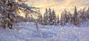 Зимние праздники 2021: полный календарь на январь и февраль