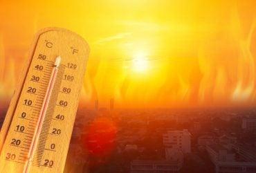 2020 год в Европе стал самым теплым в истории