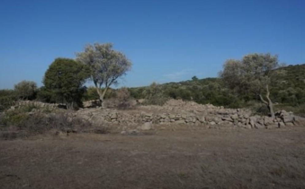 Раскопки в этом районе начались еще в 2006 году/ фото Cumhuriyet