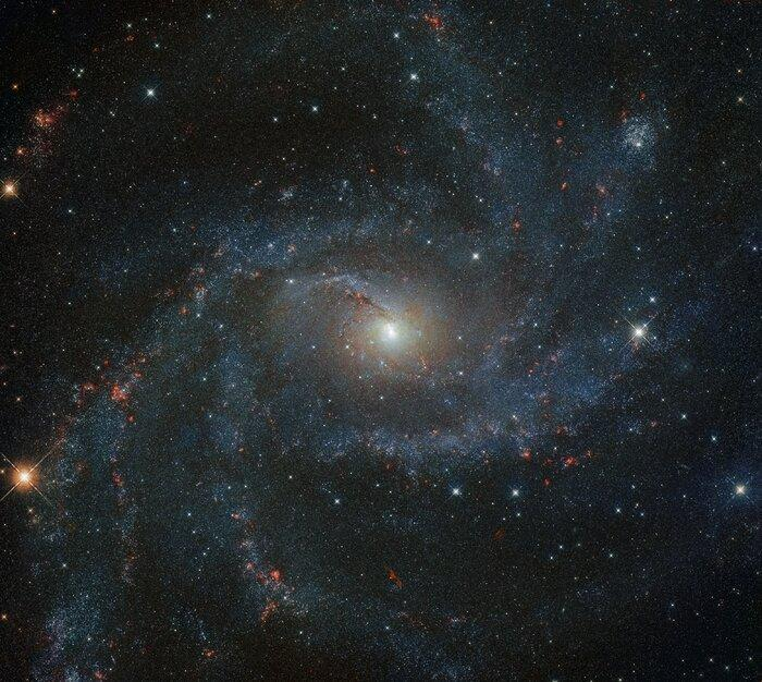 За последние 100 лет в этой галактике зарегистрировали 10 сверхновых / фото ESA/Hubble & NASA, A. Leroy, K. S. Long