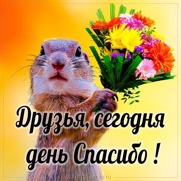 С днем спасибо картинки/ фото fresh-cards.ru