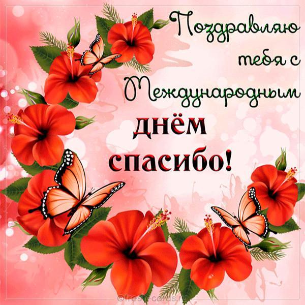 С Днем спасибо поздравления/ фото fresh-cards.ru