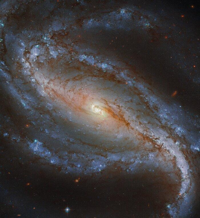 Эта галактиканаходится в южном созвездии Скульптора /фото ESA/Hubble & NASA, G. Folatelli