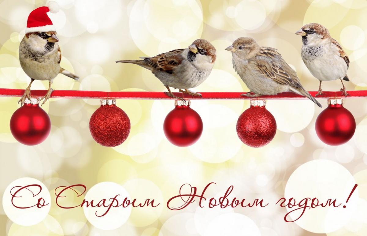 Со Старым Новым годом открытки / фото bonnycards.ru