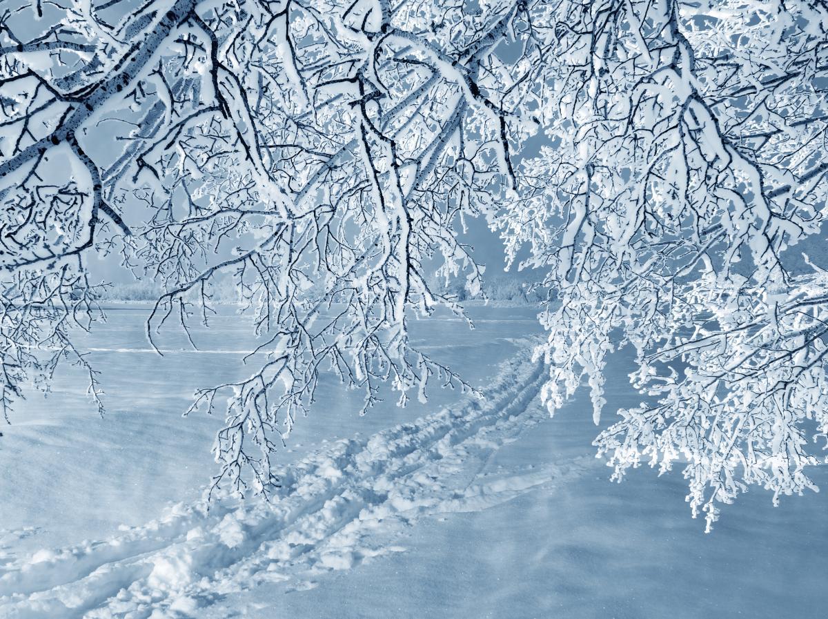 Завтра в Украине начнется настоящая зима / Фото ua.depositphotos.com
