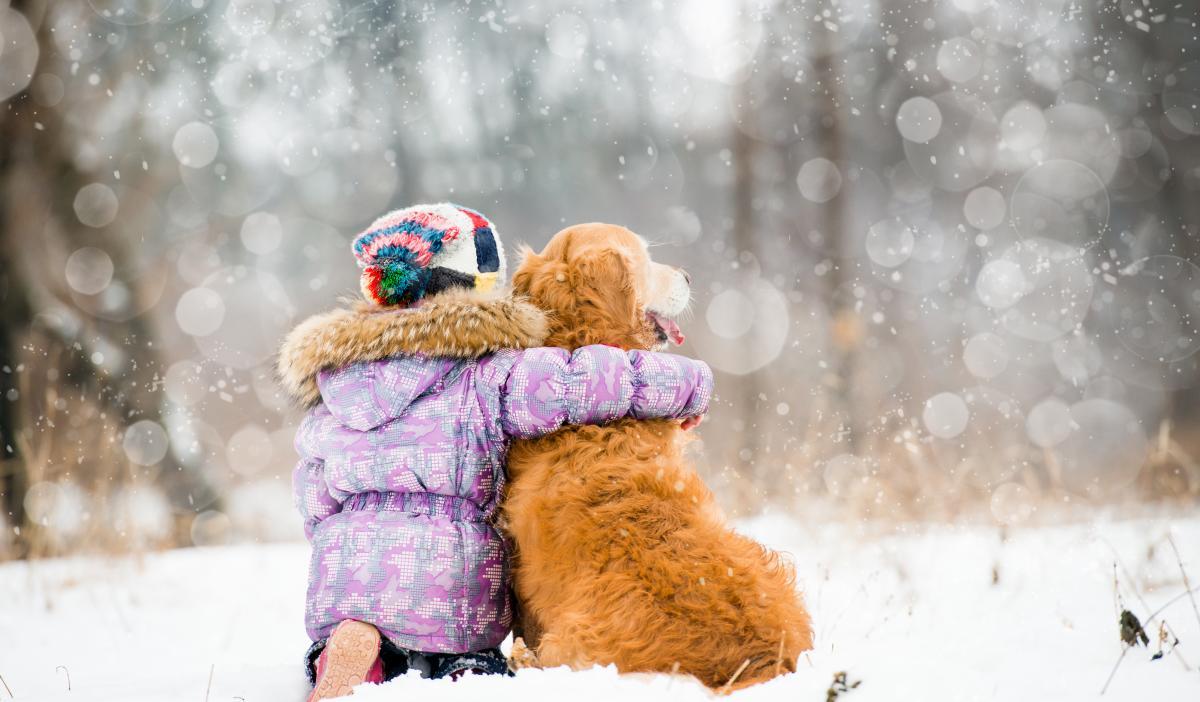 Настоящая зима закончится уже через несколько дней/ Фото ua.depositphotos.com
