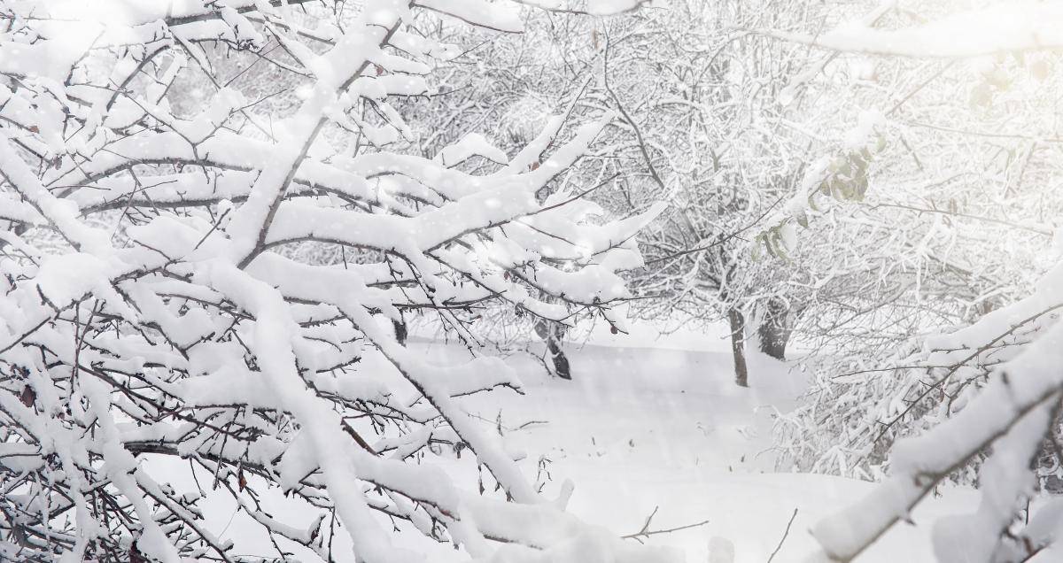 В Україні тривають морози / фото ua.depositphotos.com