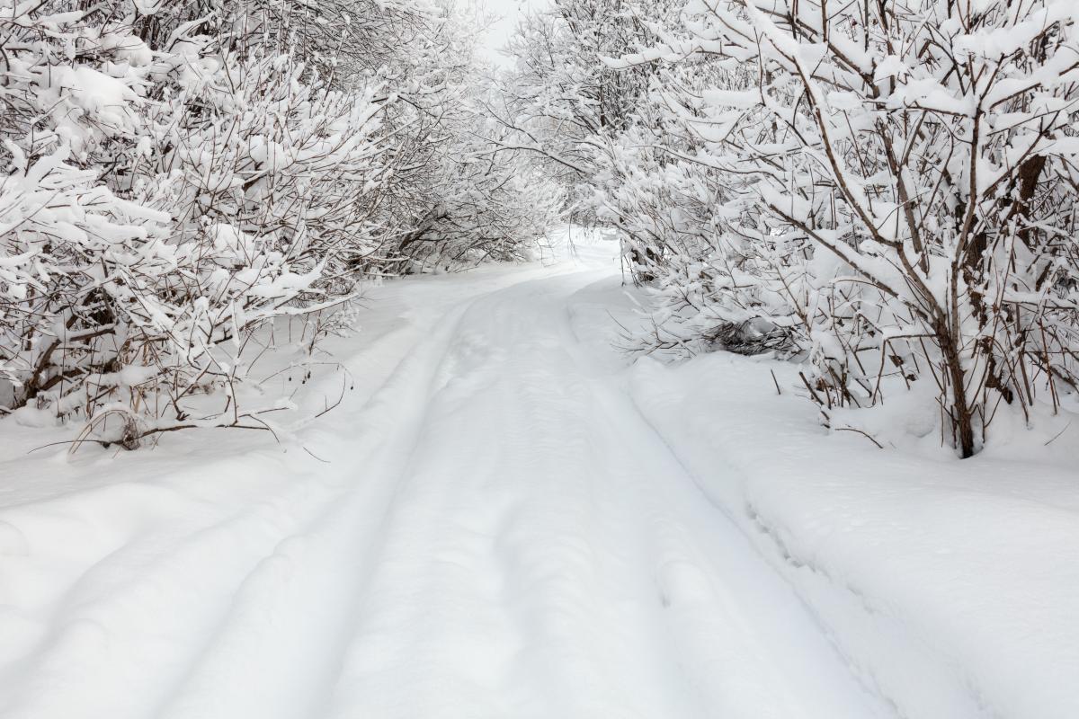 Сегодня в Украине ожидается морозная погода / Фото ua.depositphotos.com