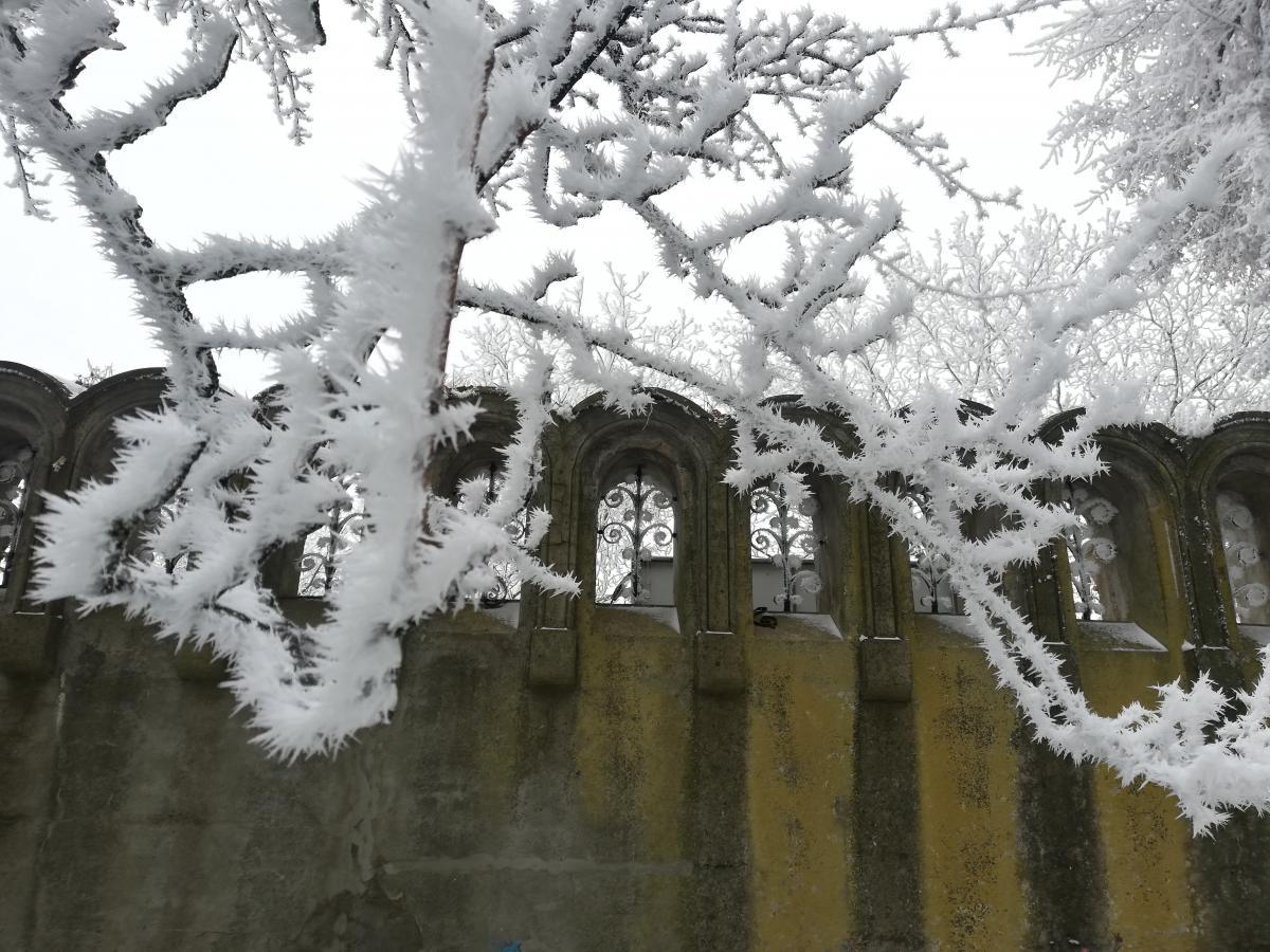 Вот такие чудеса готовит зимняя Буковина / фото Марина Григоренко