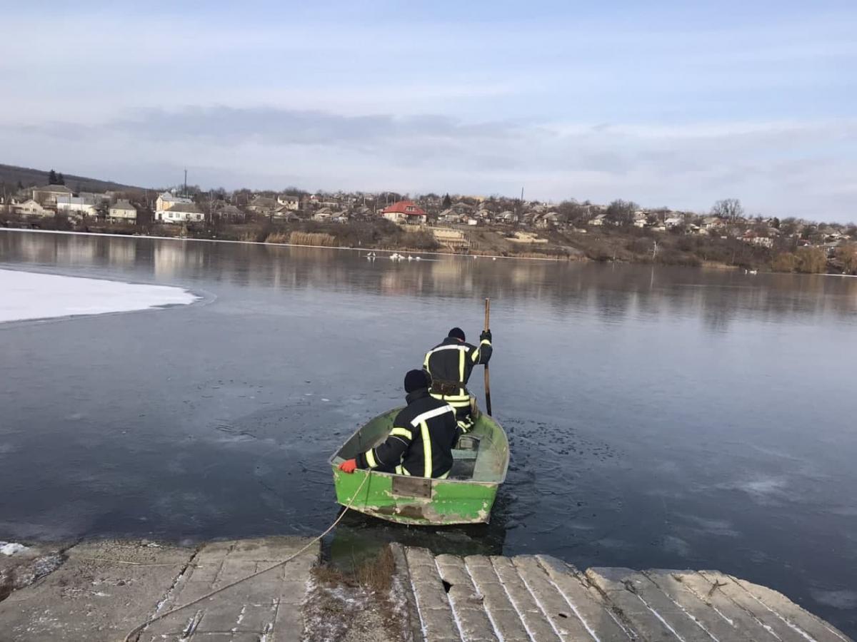 Стая лебедей оказалась в ледяной ловушке \ фото od.dsns.gov.ua
