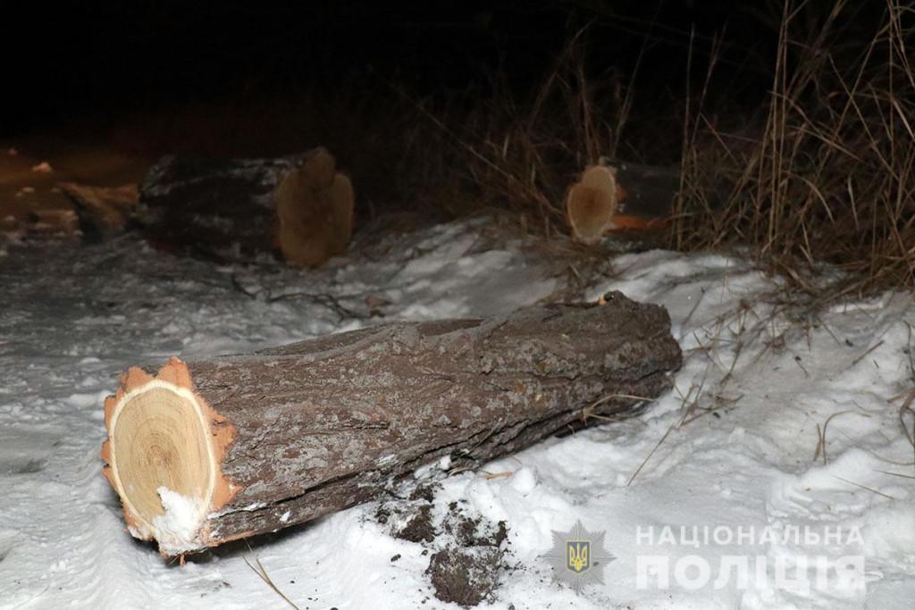 Місце інциденту під Маріуполем / фото Нацполіція