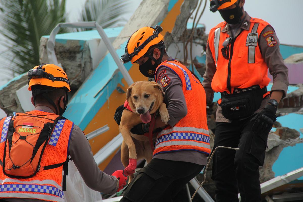 В Индонезии произошло страшное землетрясение / REUTERS