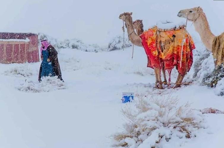 Температура в Сахарі опустилася до мінусових значень / фото Карім Бучетата / Instagram
