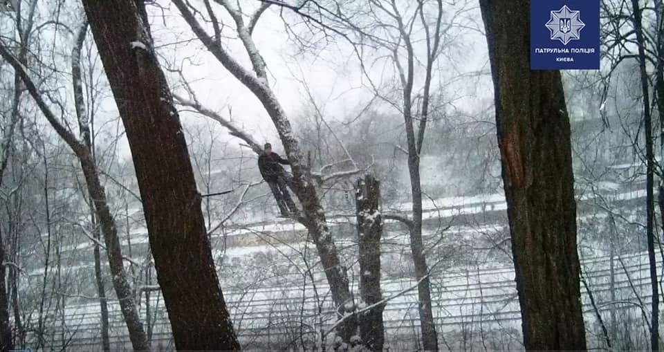 Чоловіка помітили на дереві перехожі / Патрульна поліція Києва