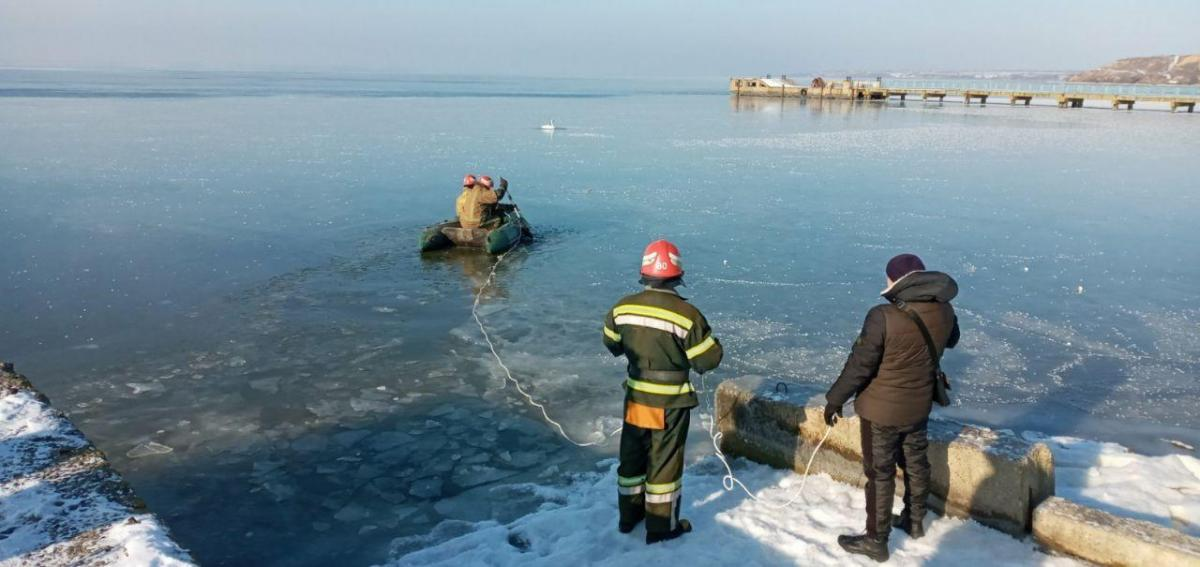 На Хаджибеевском лимані лебедя рятували таким способом / фото od.dsns.gov.ua