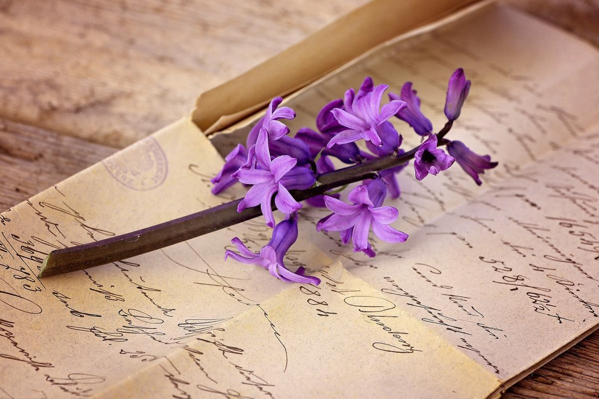 Сегодні - День почерка / фото pixabay.com