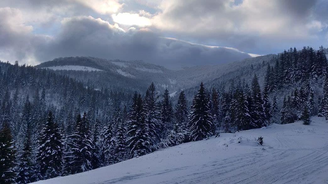 В начале 2021 года в Карпатах наконец выпал снег / фото УНИАН