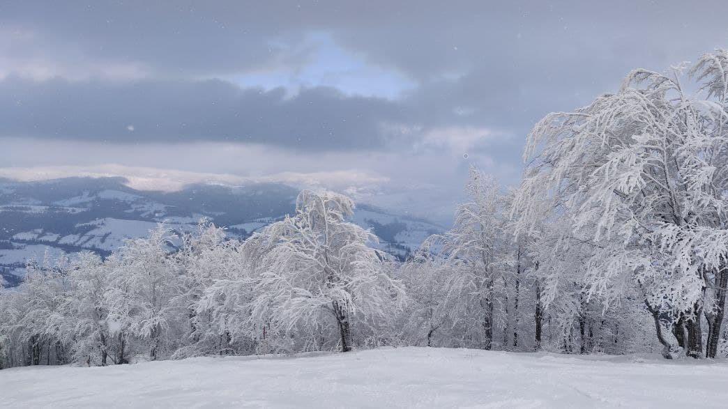 Зимние Карпаты - невероятно красивые / фото УНИАН