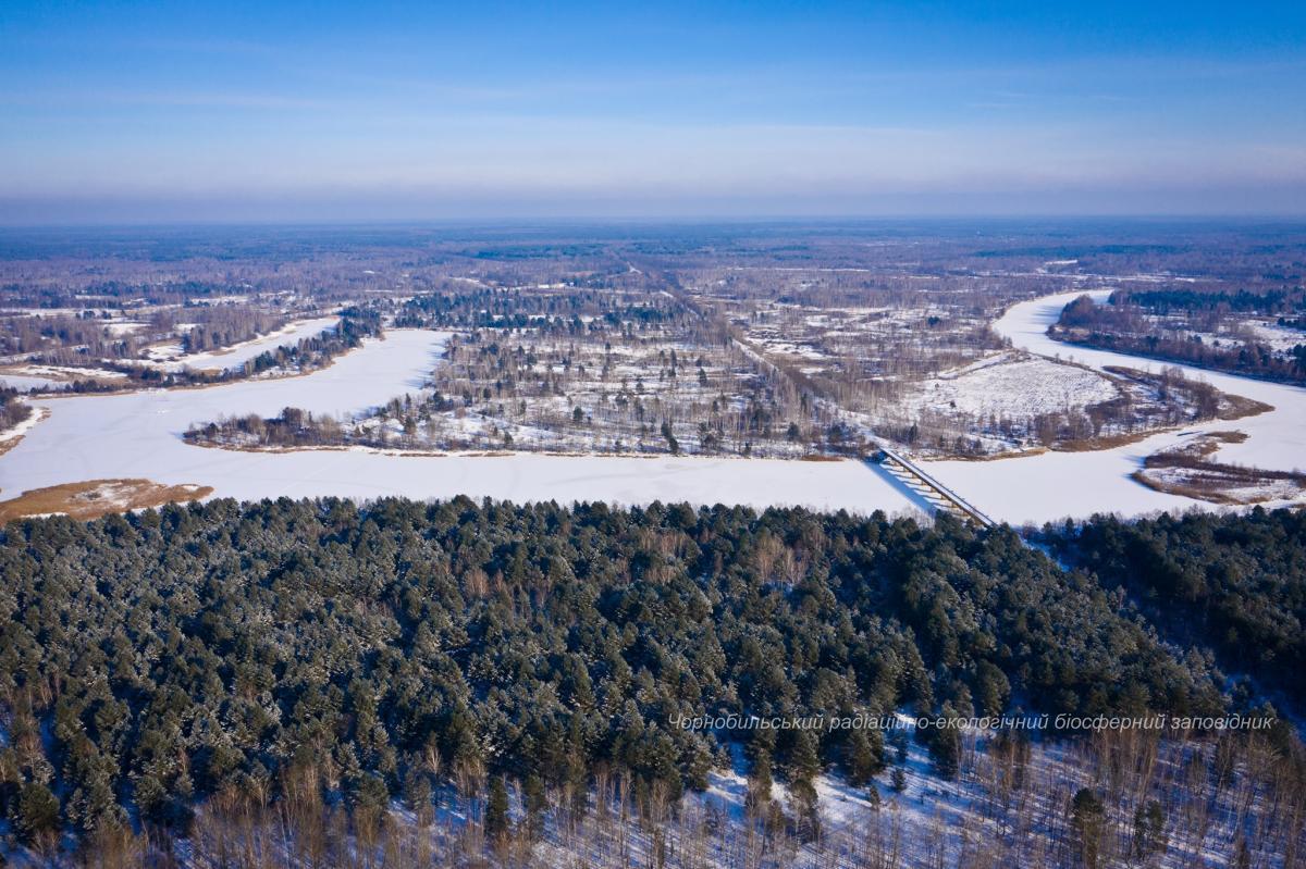 фото Чернобыльский радиационно-экологический биосферный заповедник