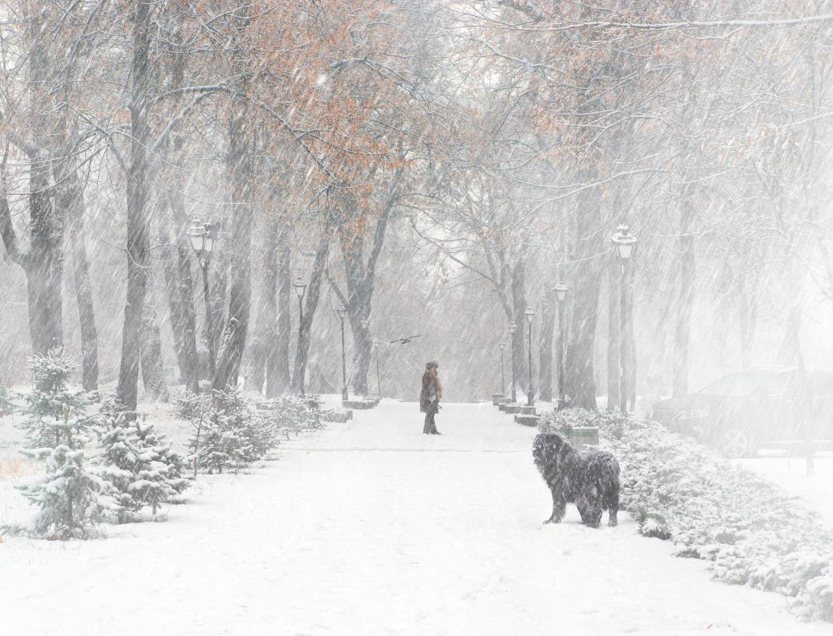 Через несколько дней в Украине начнет снежить / фото ua.depositphotos.com