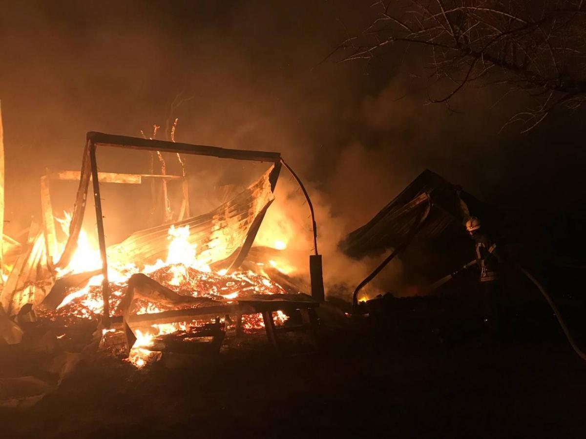 В пригороде Одессы горела база отдыха / фото od.dsns.gov.ua