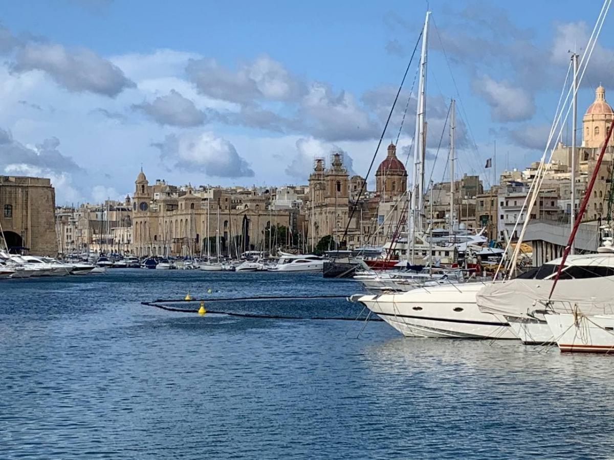 Мальті є чим дивувати / фото Михайло Ганницький