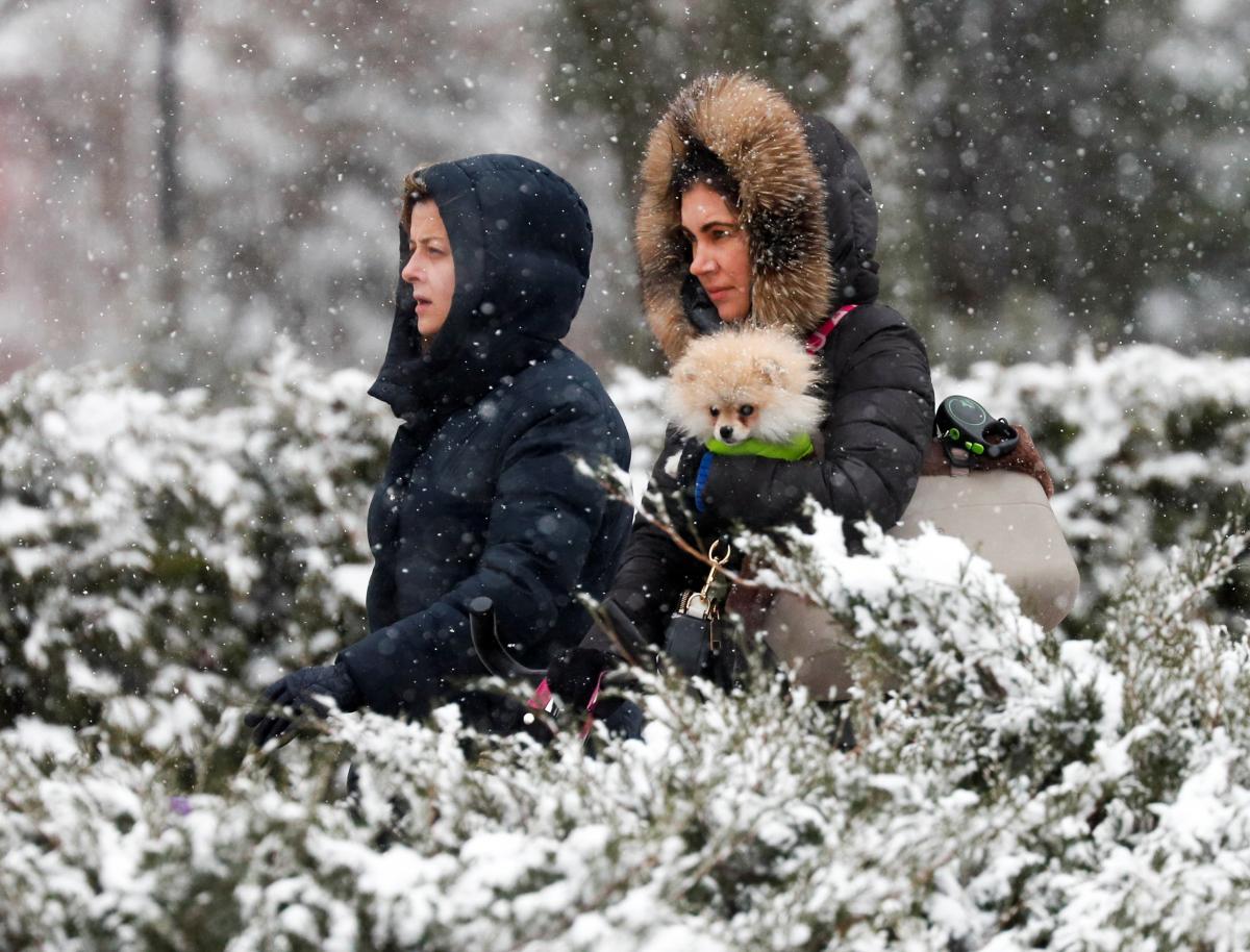 Западные области снова засыплет снегом / Фото REUTERS